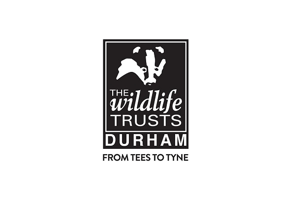 The Durham Wildlife Trust Logo